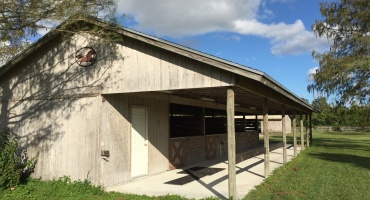 Stall Rental,For Rent,1062