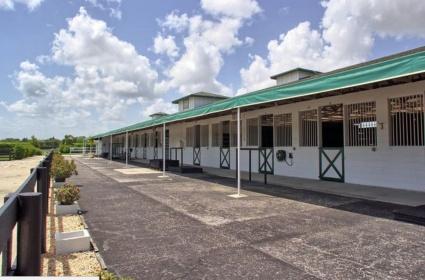 2 BathroomsBathrooms,Stall Rental,For Rent,1064